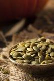 Zucca organica cruda Pepita Seeds Fotografie Stock Libere da Diritti