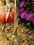 Zucca su fieno Fotografie Stock