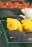 Zucca su un servizio dell'azienda agricola Fotografie Stock Libere da Diritti