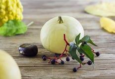 Zucca sulla tavola di legno Fotografie Stock