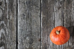 Zucca sulle plance di legno Fotografia Stock