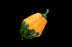 Zucca verde arancio su fondo nero Fotografie Stock