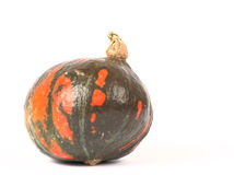 Zucca verde con i punti arancioni Fotografia Stock Libera da Diritti