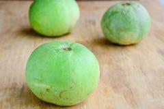Zucca verdura-rotonda indiana Immagine Stock Libera da Diritti