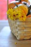 Zucca, zucche e mummie gialle in cestino Immagine Stock