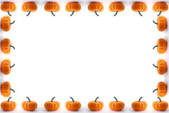 Zucche fotografia stock