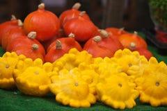 Zucche arancio e gialle in un mercato Fotografia Stock