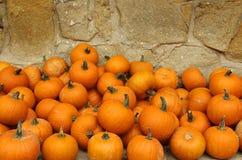 Zucche arancioni Immagine Stock
