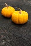 Zucche arancioni su una priorità bassa di legno fotografia stock libera da diritti