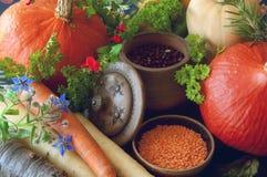 Zucche, carote, semi, zucca torta ed erbe Immagine Stock Libera da Diritti