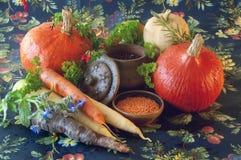 Zucche, carote, semi, zucca torta ed erbe Immagine Stock