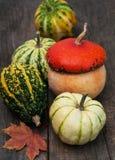 Zucche con i fogli di autunno Immagini Stock Libere da Diritti
