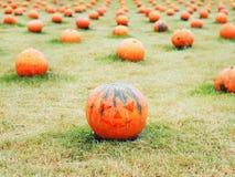 Zucche con il fronte della lanterna di Jack O nel campo per Halloween Immagini Stock Libere da Diritti