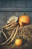 Zucche con la corda ed il cappello su fieno Immagini Stock