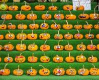 Zucche decorate Immagine Stock