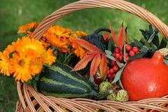 Zucche decorative Immagine Stock Libera da Diritti