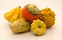Zucche decorative Fotografie Stock Libere da Diritti