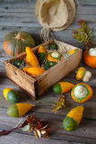 Zucche decorative in una scatola di legno Fotografie Stock Libere da Diritti