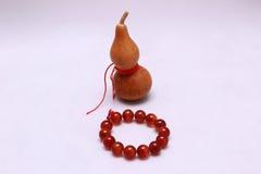 Zucche del pellegrino cinesi Fotografia Stock