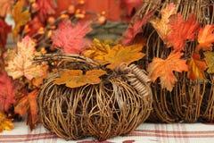 Zucche della vigna con le foglie di caduta immagine stock