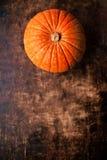 Zucche di autunno sopra la tavola di legno, immagine di vista superiore Backgr di autunno Immagine Stock