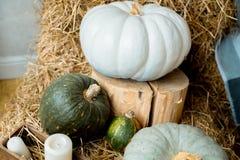 Zucche di autunno su paglia Immagine Stock Libera da Diritti