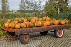 Zucche di autunno su un rimorchio Fotografia Stock