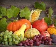 Zucche di autunno sulle schede di legno Fotografia Stock Libera da Diritti
