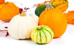 Zucche di autunno in un canestro della paglia Fotografia Stock
