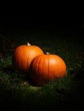 Zucche di Halloween Immagine Stock Libera da Diritti
