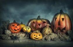 Zucche di Halloween immagine stock