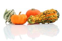 Zucche di Halloween Immagini Stock