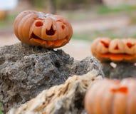 Zucche di Halloween all'aperto Fotografia Stock