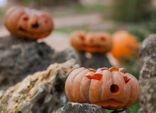 Zucche di Halloween all'aperto Immagini Stock Libere da Diritti