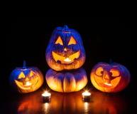 Zucche di Halloween che emettono luce dentro Immagine Stock