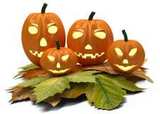 Zucche di Halloween con le foglie di caduta isolate sopra Fotografia Stock Libera da Diritti