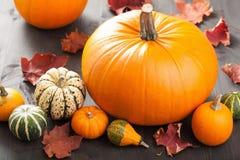 Zucche di Halloween di autunno su fondo di legno Fotografie Stock