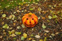 Zucche di Halloween in Finlandia ad ottobre Fotografie Stock