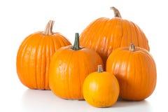 Zucche di Halloween isolate Fotografia Stock