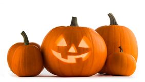 Zucche di Halloween su bianco fotografia stock libera da diritti