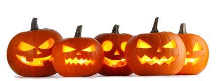 Zucche di Halloween su bianco immagini stock