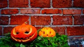 Zucche di Halloween su una foglia della felce Immagine Stock