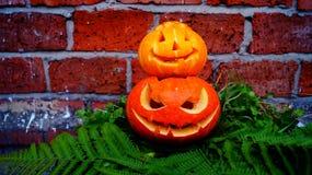 Zucche di Halloween su una foglia della felce Fotografia Stock Libera da Diritti