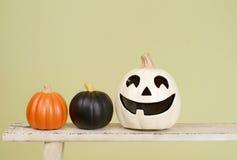 Zucche di Halloween sul banco di legno rustico Immagini Stock Libere da Diritti