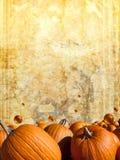 Zucche di Halloween sulla priorità bassa del grunge dell'annata Immagini Stock