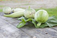 Zucche di zucchino Fotografie Stock