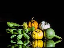 Zucche e banana colore-piene del lightpaint di natura morta piccole Fotografia Stock