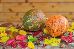 Zucche e fogli di autunno Fotografia Stock