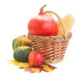 Zucche e foglie crude di caduta Fotografia Stock