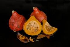Zucche e foglie di autunno decorative per Halloween Fotografie Stock